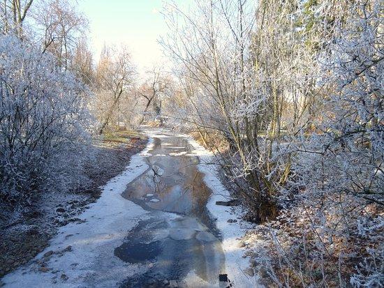 Bad Krozingen, Alemania: Neumagen, teilweise zugefroren