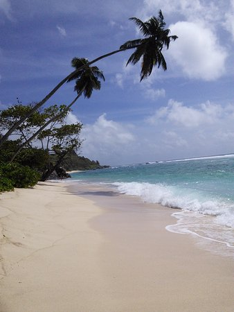 Anse Forbans, Seychelles: Glorious beach just steps away from hotel.