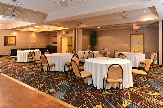 Holiday Inn Express Hotel & Suites Dallas South-DeSoto: Meeting Room