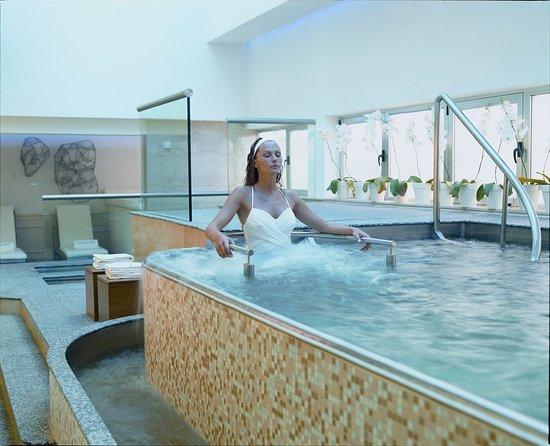 Alvear Palace Hotel: Ludic Pool