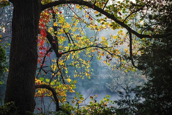 Cove Lake State Park in Caryville, TN.... Photo credit: J. Phillips Photographic