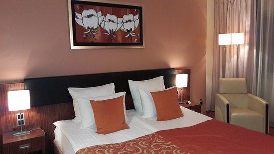 Hotel Avalon: 20170102_174742_large.jpg