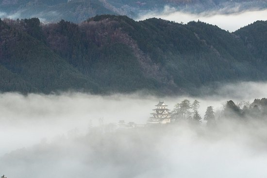 Gujo Hachiman Castle : 雲上の郡上八幡城