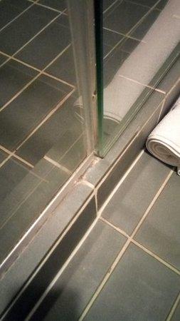 Showing origin of mildew smell in shower