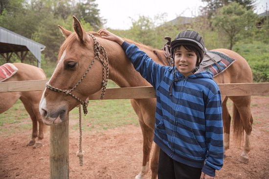 Elkton, VA: My oldest with his horse