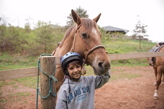 Elkton, เวอร์จิเนีย: My little guy (a huge animal lover) with his horse