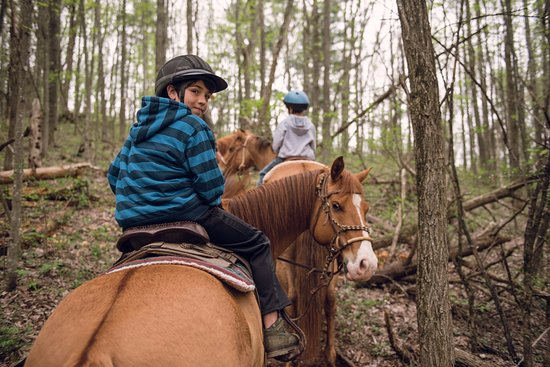 Elkton, เวอร์จิเนีย: My oldest and his horse on the trail.