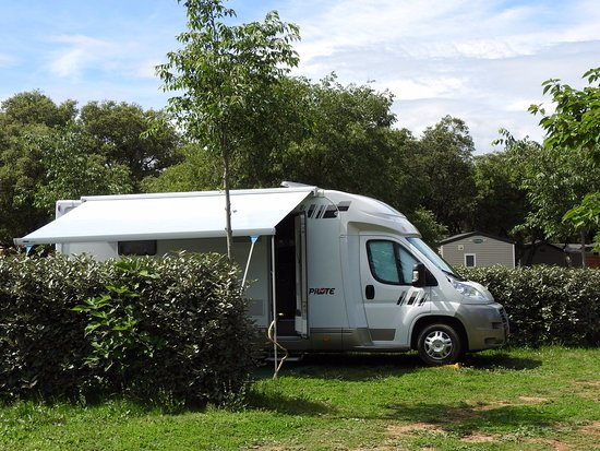 Herault, Francia: Emplacement Camping Domaine de Gajan