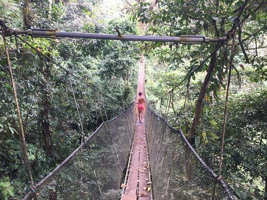 Parrita, Costa Rica: Hanging bridges