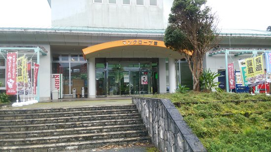 Amami, Japan: DSC_2348_large.jpg