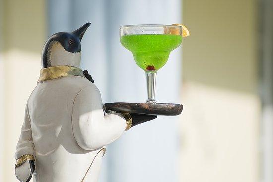 Penguin Hotel : Purple Penguin Cafe