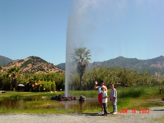 Guerneville, CA: Geyser in Calistoga