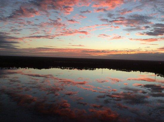 Blue Heron Beach Resort: Morning on the veranda.