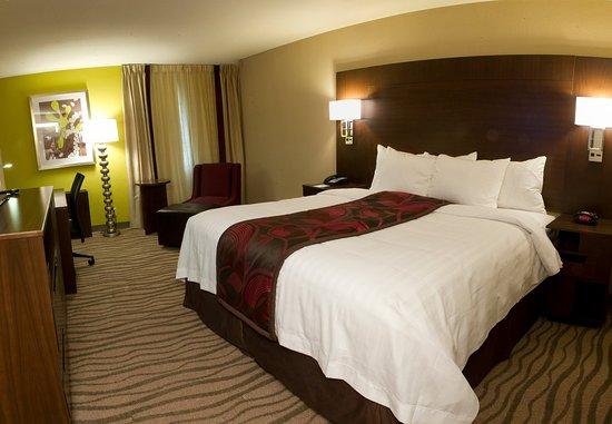 Ίρβινγκ, Τέξας: King Guest Room