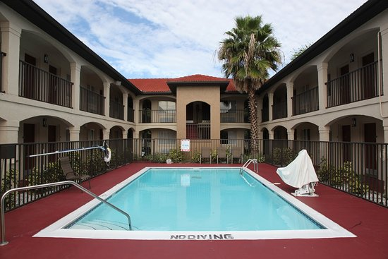Red Roof Inn Orlando South - Florida Mall: Pool