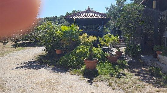 Betina, Croatia: Matija Camping Park