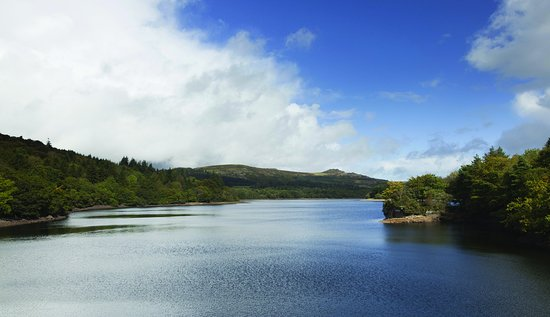 Yelverton, UK: Burrator Reservoir