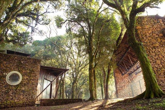 Parque Ecologico Municipal