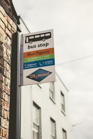 Worth, UK: Our Very Own Bus Stop - running hourly buses to both Sandwich & Deal