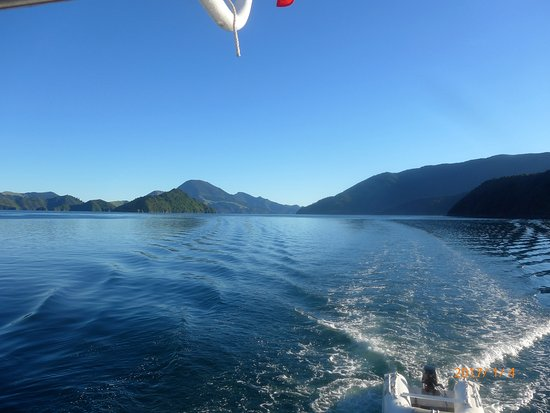 Havelock, New Zealand: Heading round in to Tennyson Inlet