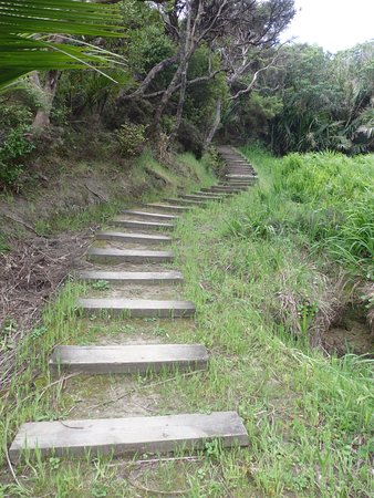 Gisborne, New Zealand: And so the steps begin