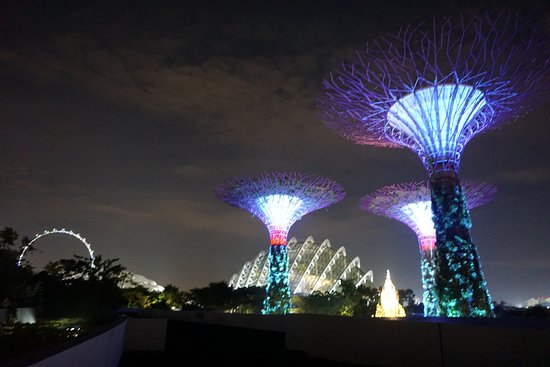 Viet Vision Travel - Day Tours: Gardens by the Bay in Singapore