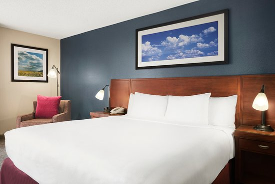 DoubleTree DFW Airport North: King Room