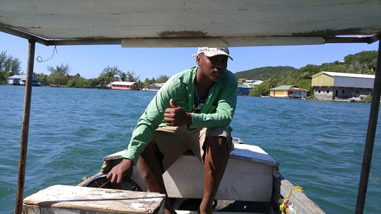 Steve's Paddle Shack: Our mangrove tour captain
