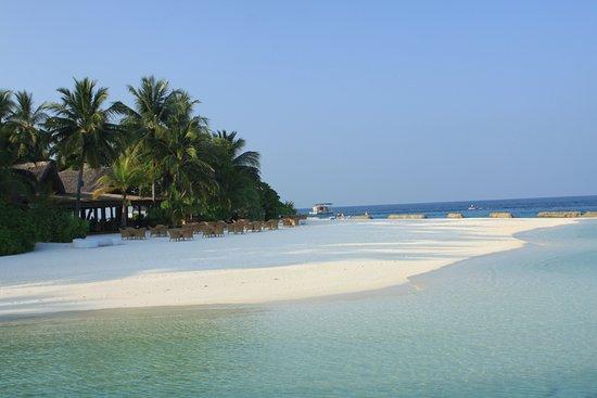 Kuramathi: Sand Bar