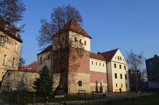 Piast Castle