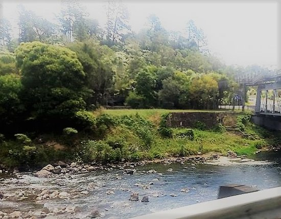 Waihi, Νέα Ζηλανδία: Hard to get quality shots out the car window, hope it captures some of the magic of the gorge.