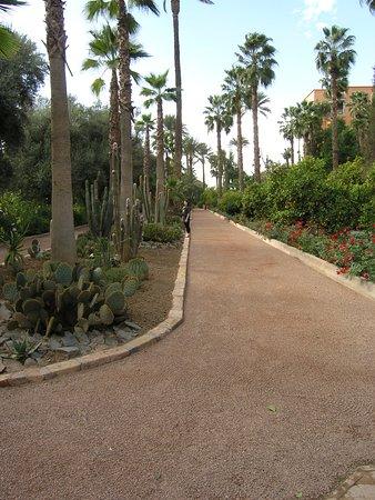 Landscape - Picture of La Mamounia Marrakech, Marrakech - Tripadvisor