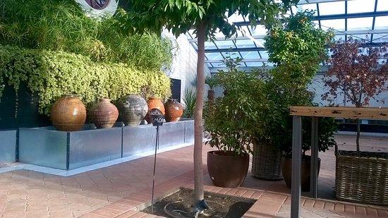 Vista de la terraza picture of el invernadero de los penotes alcobendas tripadvisor - Los penotes alcobendas ...