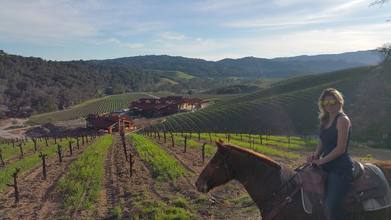Creston, CA: A view of Halter Ranch Vineyard