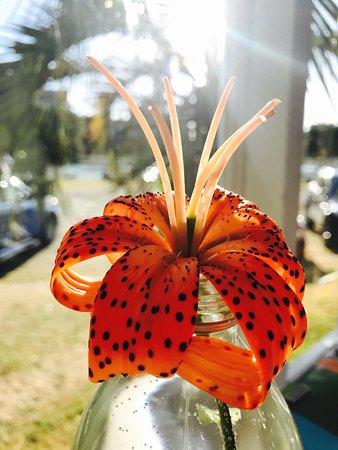 Gisborne, Selandia Baru: photo6.jpg