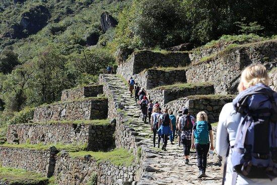 Runa Ñan Travel