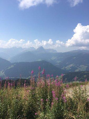 Brunico, Italy: panorama