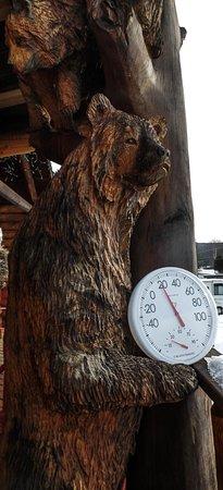 Zdjęcie West Forks