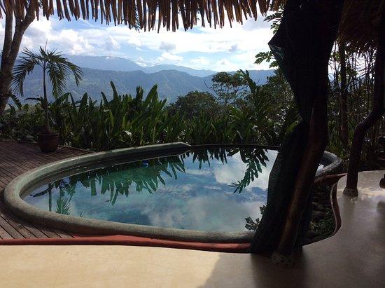 Playa Matapalo, Costa Rica: Vista de la piscina