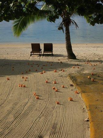 Beach at Etu Moana