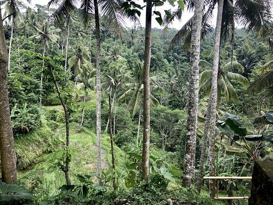 Tegalalang, Indonezja: Gunung Kawi