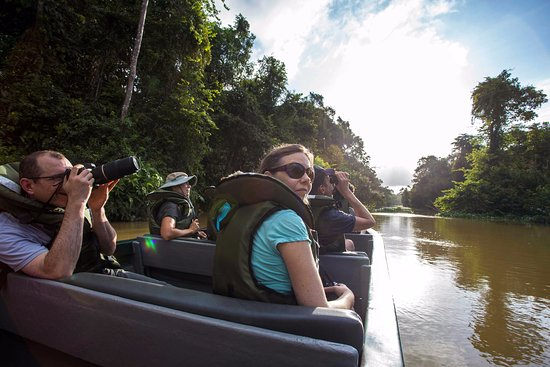 Kinabatangan District, Malaysia: Sunset cruises are the best for spotting wildlife