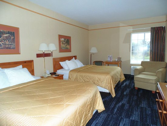 Houghton Lake, MI: Guest Room