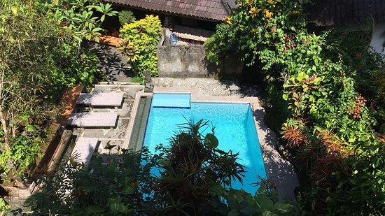 Gustis Garden Bungalows : photo0.jpg