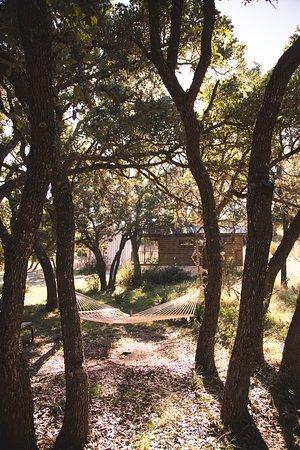 Tonkawaya Ranch B&B: Relax in a hammock under the Live Oaks