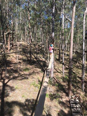 جولد كوست, أستراليا: photo9.jpg
