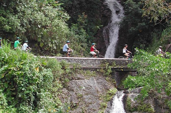 Private Blue Mountain Bicycle Tour ...