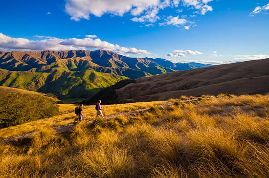 Full-Day Hike on Private Land from...