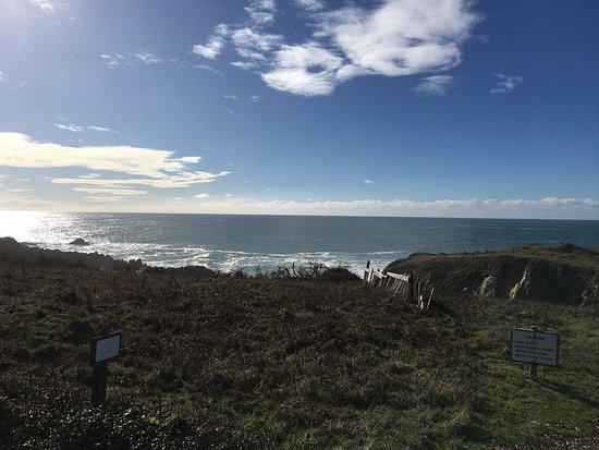 The Sea Ranch, CA: photo4.jpg