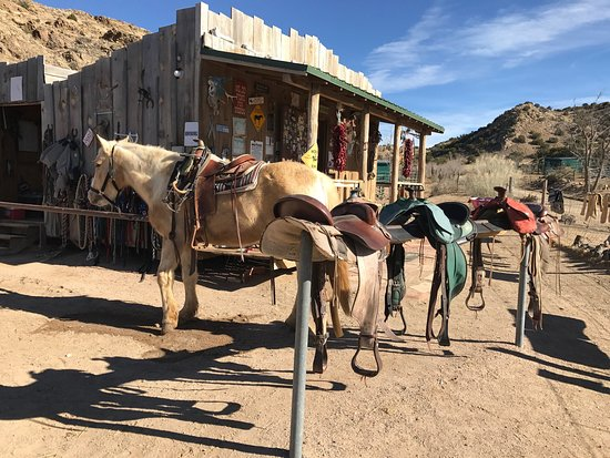 Cerrillos, Nuevo México: photo1.jpg